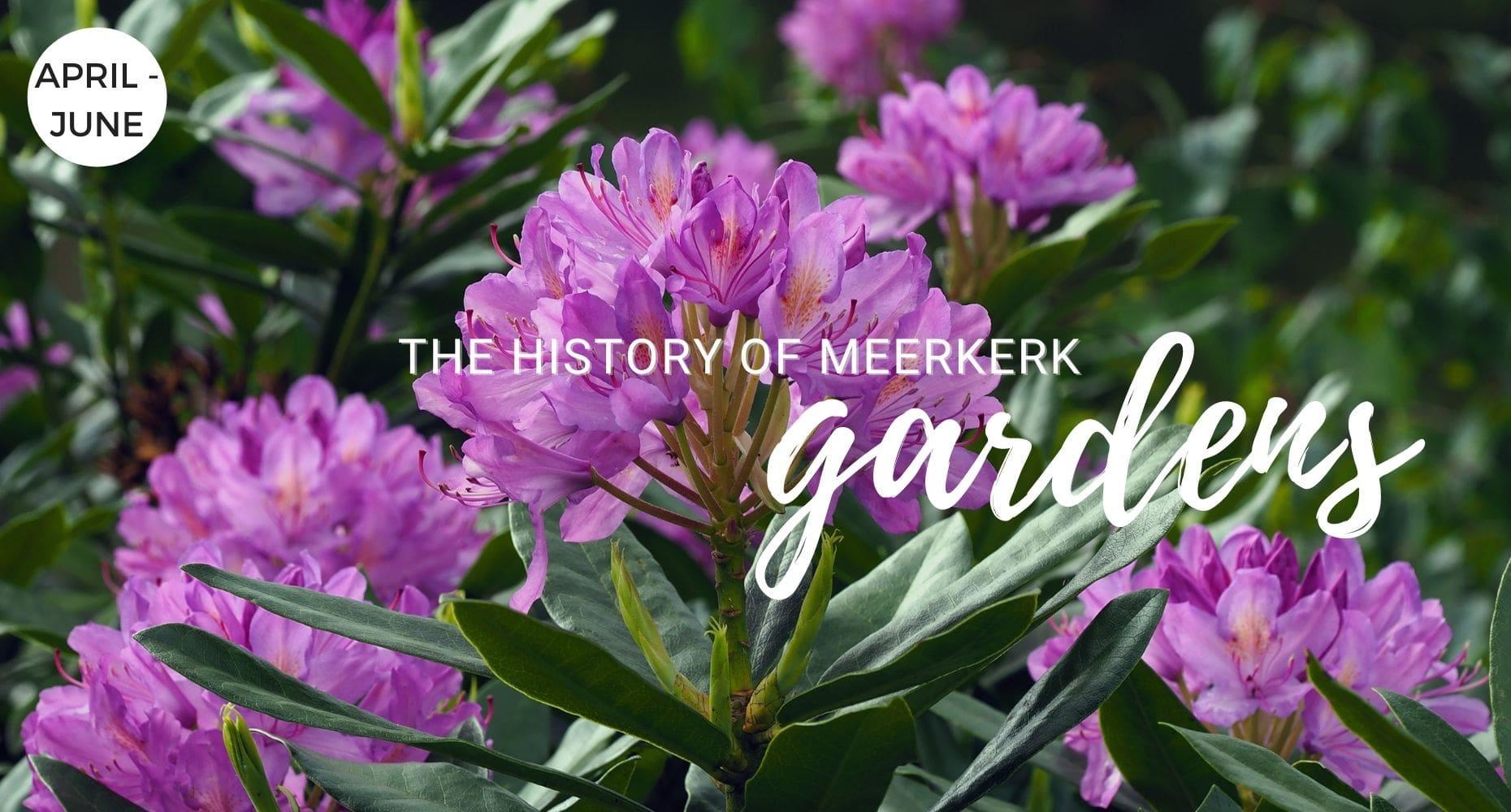 The History of Meerkerk Gardens