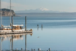 Paddel Boarding, Jennifer, Coupeville, Whidbey Island, Washington, Island life, Water